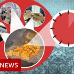 Coronavirus: More myths to ignore   BBC News