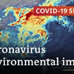 Coronavirus: Good for the environment? | Covid 19 Special