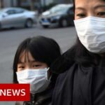 World battles coronavirus outbreak   BBC News