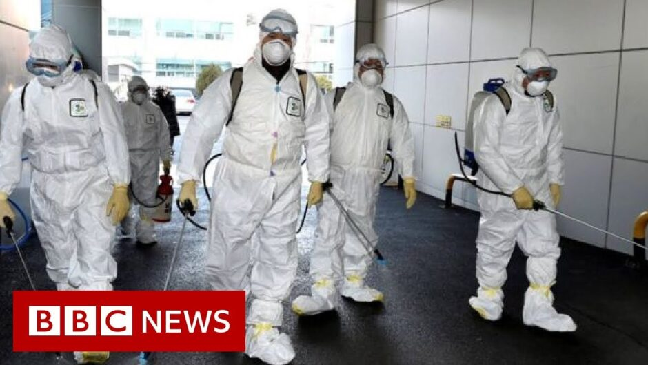Coronavirus: South Korea has seen its confirmed cases spike   BBC News