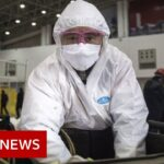 Coronavirus disease named Covid 19   BBC News