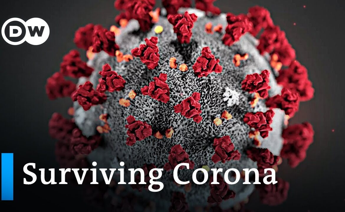 What happens when you're infected with the COVID 19 coronavirus? | DW News