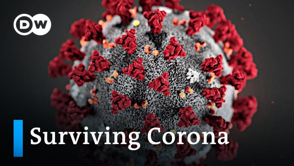 What happens when you're infected with the COVID 19 coronavirus?   DW News