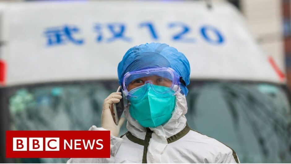 Coronavirus: Death toll rises to 81 as China extends holiday   BBC News