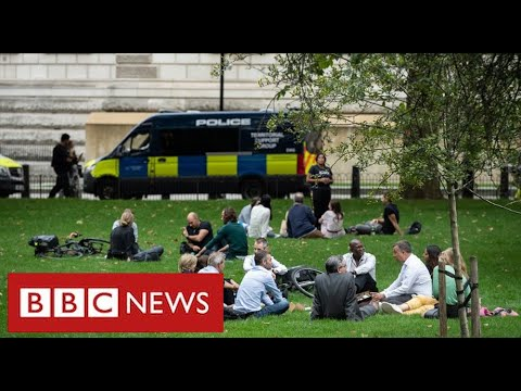Government urges neighbours to report groups of more than 6 people to police   BBC News