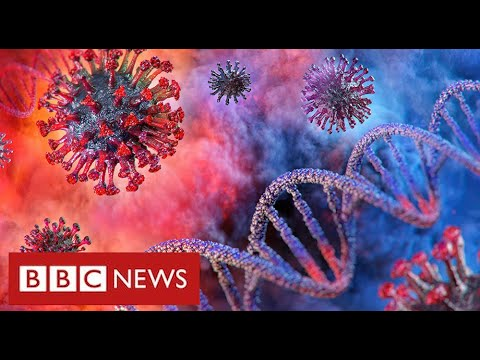 "Coronavirus will remain a threat ""for a very long time"" warn leading scientists   BBC News"