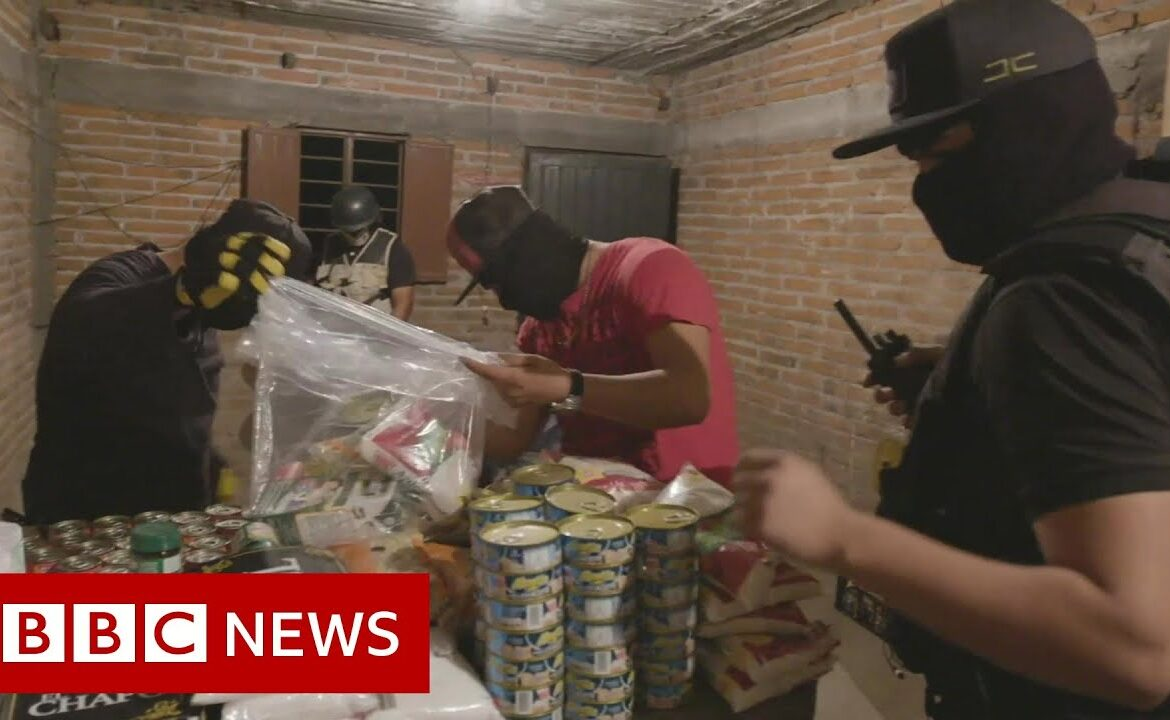 Coronavirus: How Mexican cartels are taking advantage of pandemic   BBC News