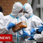 Coronavirus updates from around the world   BBC News