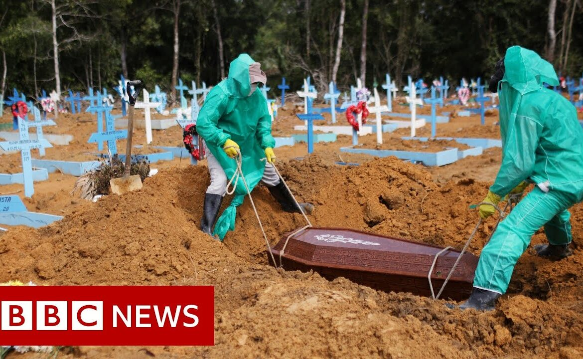 Excess deaths: How many are dying from coronavirus?   BBC News