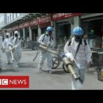 Fears of second wave in China   as questions continue about origins of coronavirus   BBC News