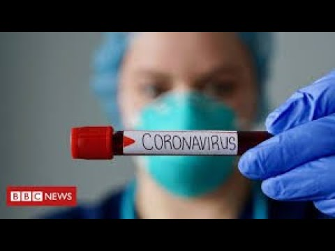 "More than 60,000 ""excess deaths"" so far during UK coronavirus pandemic   BBC News"