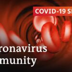 How long does immunity against the coronavirus last? | COVID 19 Special