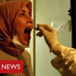 Turkey turning coronavirus tide with huge contact tracing effort   BBC News
