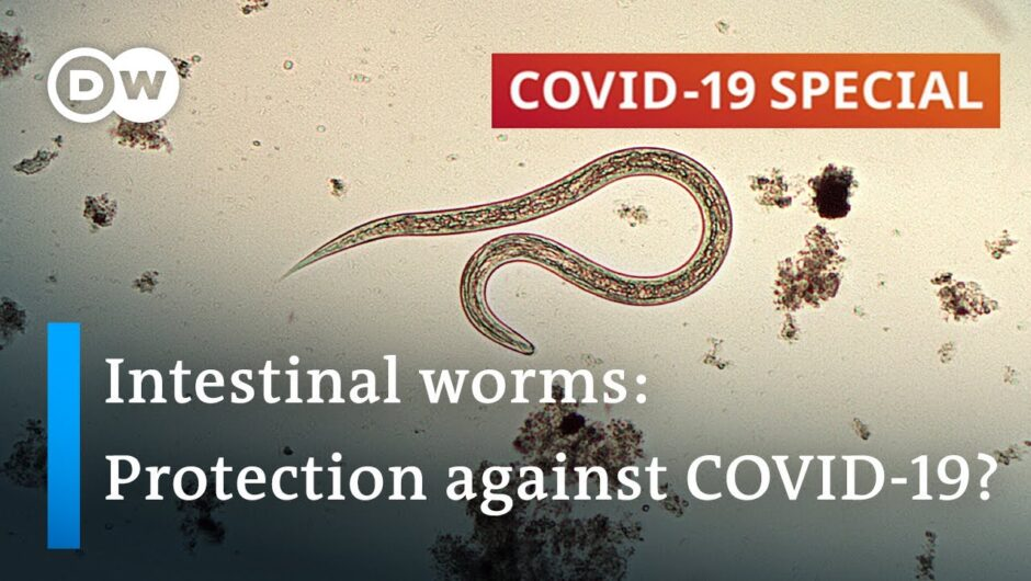 Coronavirus: Are parasitic worms responsible for low fatality rates in Africa? | COVID 19 Special