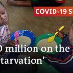 Coronavirus in Africa: Is the fallout worse than the disease? | COVID 19 Special