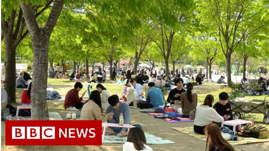 Coronavirus: How South Korea 'crushed' the curve   BBC News