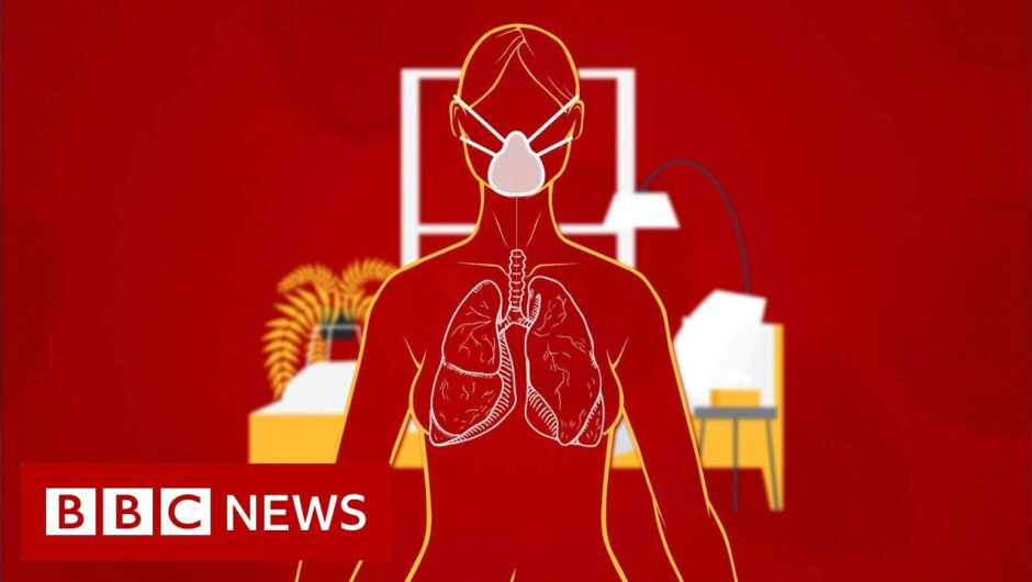 Coronavirus: How long does it take to recover?   BBC News