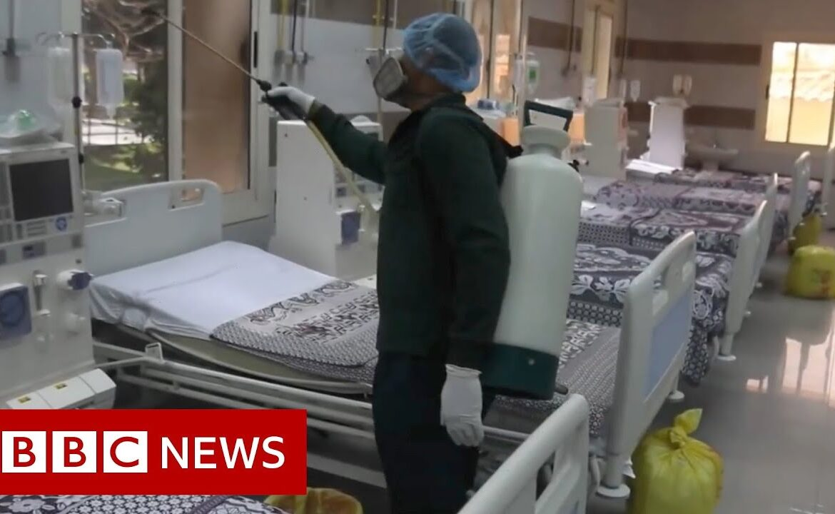 Coronavirus in Egypt: 'The supervising doctor has tested positive'   BBC News