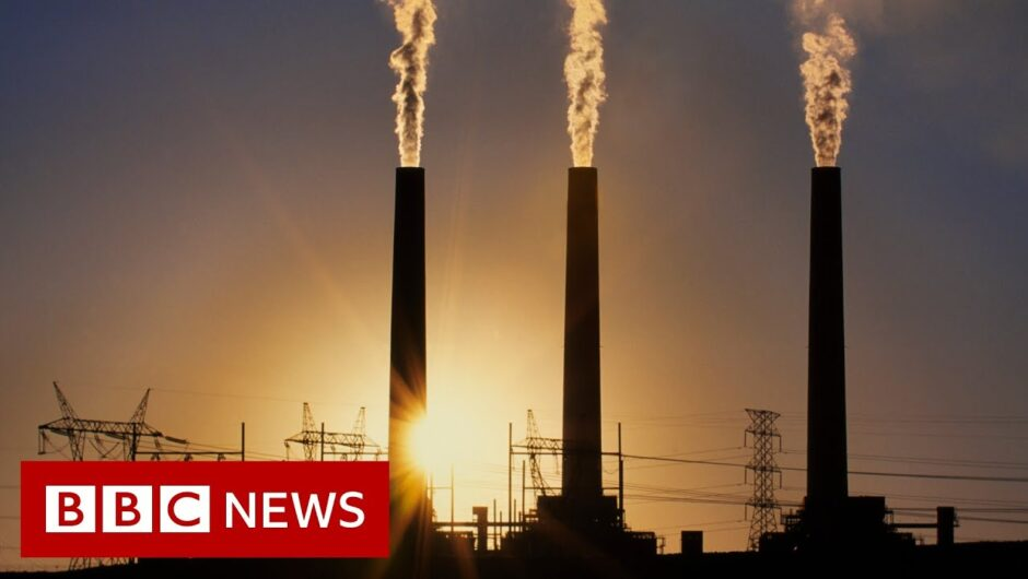 Coronavirus: Is there a link between the Severity of Covid 19 and Air pollution   BBC News